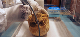 Tooth enamel helps identify historical migration routes